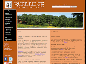 burr-ridge-illinois
